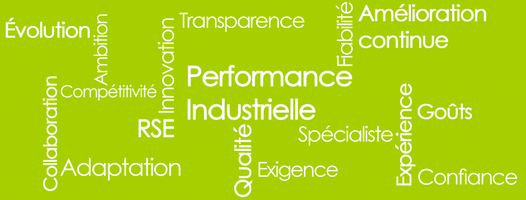 Performance industrielle